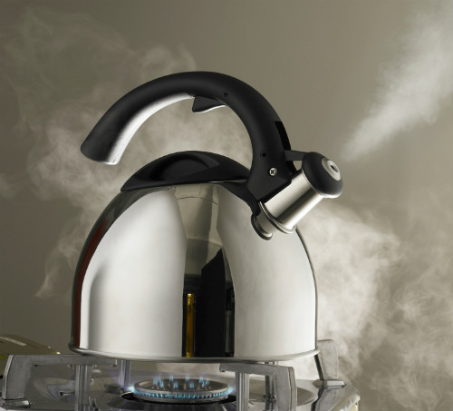 how to prevent limescale in kettle
